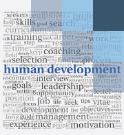 Professional Development Programme Pdf